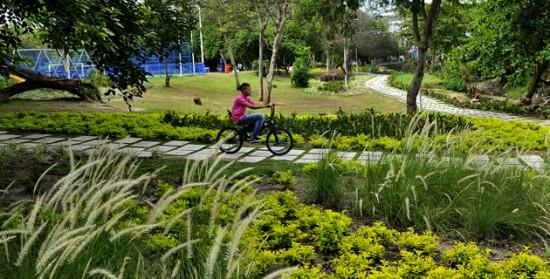 El renovado pulm n de barranquilla revistas for Actividades jardin botanico 2016