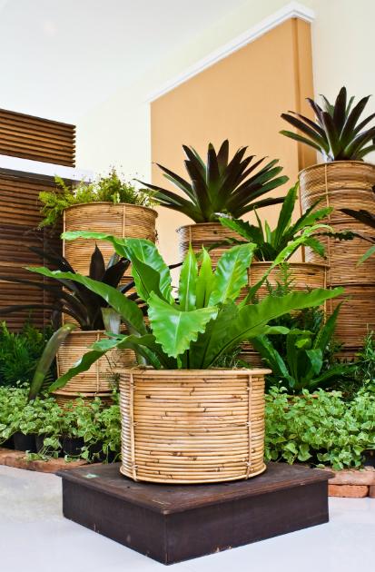 Jardines para darles un nuevo aire a los espacios for Jardines minimalistas con bambu