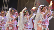 Luis Rodríguez Lezama, Carnaval S.A y Archivo Partícular